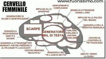 divisione, schematizzazione, scarpe, generatore, mal di testa, memoria, diritti, doveri, impulso, shopping, oro, senso, scuse, pettegolezzi, abilità