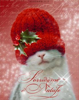 cartoline natale, felicità, gioia, gaiezza, brio, cappello, zuccotto, pungitopo, agrifoglio, vischio, gatto, sguardo, dolce