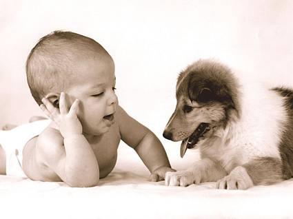 facciamo due chiacchiere,bambini, neonati, foto, cucciolo, cane