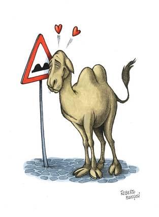segnale, pericolo, fondo, sconnesso, gobbe, dune, dunette, dossi, cammello, ritratto, amata, cuoricini, sentire, vicino