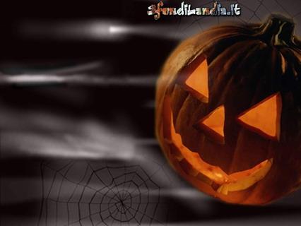 zucca, halloween, paura, ragno, ragnatela, notturno, nebbia