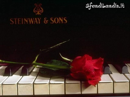 rosa, pianoforte, musica, note, spartiti