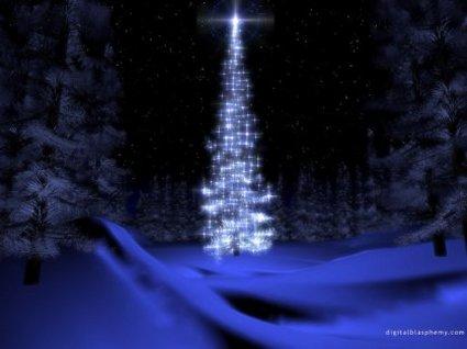 stella, natale, cometa, albero, scia, luminosa, regali, festeggiamenti, santo, neve, amore, gioia, xmas