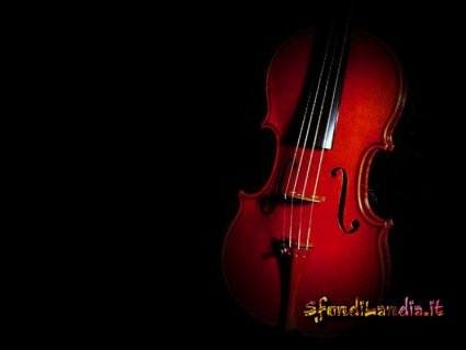 strumento, musicale, musicali, corde, arco, archetto, crine, cavallo, stradivari, legno, suono, suoni, suonare