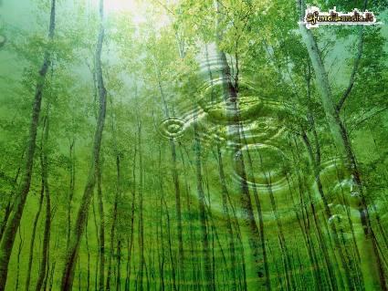 distesa, relax, natura, riposo, stress, recuperare, verde, speranza
