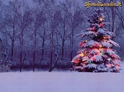natale, paesaggio, albero, blu, neve, gioia, calma, festa, colori, luci, abete, pino