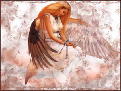 angelo, amore, fermo, prigione, pazienza, ali, volare, stanchezza, riposo, forza, aiuto