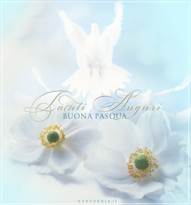 colomba, resurrezione, simbolo pace, rosa, bianca, volo, festa, miracolo, Dio, Gesù