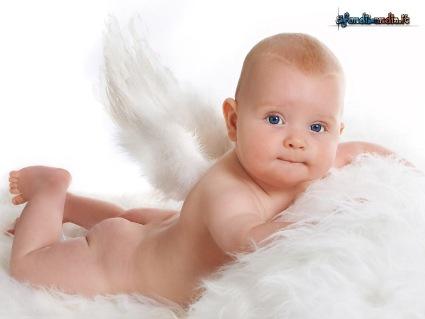 bimbo, nascita, evento, occhioni, ali, seta, velo, accudire, amore