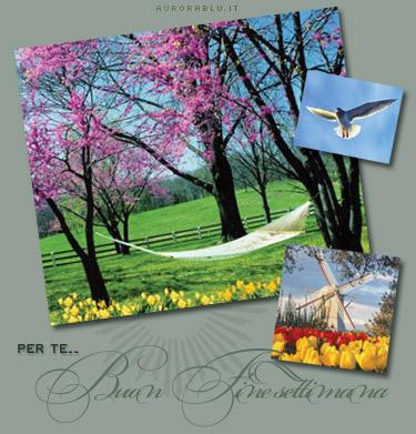 cartoline buon fine settimana, weekend di pac, riposo settimanale, cartoline gita fuori porta