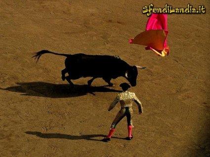 toro, spagna, torero, uccidere, incornare, matador, Plaza de toros, arena, cogida, ferita, descabello, banderillas, picche, picca, tercio, inferto