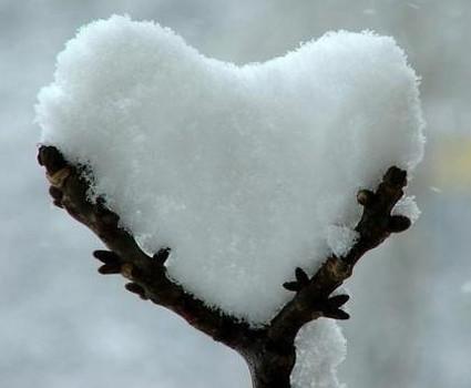 neve, freddo, gelo, big snow, cuore, amore, passione