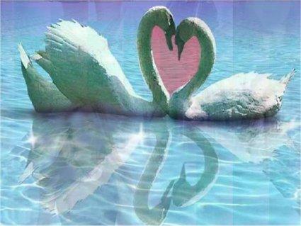 cartoline amore, collo e cuore, scherzo natura, amore naturale, volersi bene, cartoline d'amore