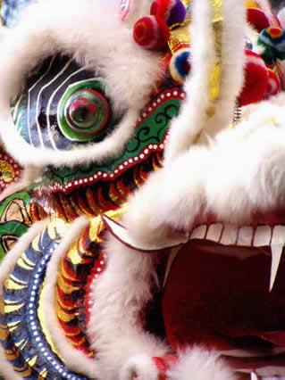 drago, dragone, dralion, capodanno, cinese, cina
