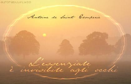 invisibile, occhi, natura, foschia, tramonti, alberi, nebbia, aurea, aurora, rosa, rosato, gradazione
