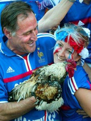 cartoline galline, francia, tifosi, nazionale, simpatia,galli e galletti, animali da stadio