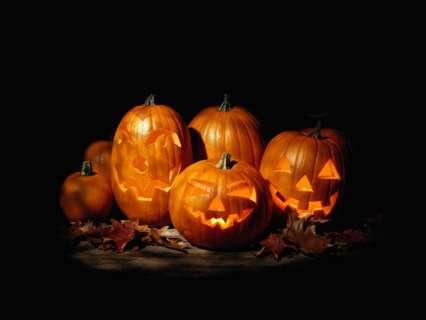 zucche, halloween, festa, paura, maschere, scherzi