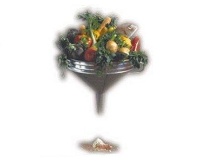 bentro, prima, pesci, frutta, verdura, esce, polvere, di tutto, liofilizzato, passato, carote, rape, uva