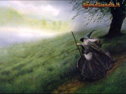 magia, bastone, cappello a punta, cilindro, vento, albero, secolare, sentiero, sterrato, barba, bianca
