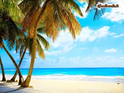 mare, sabbia, immersioni, fondali, sereni, relax, solitari