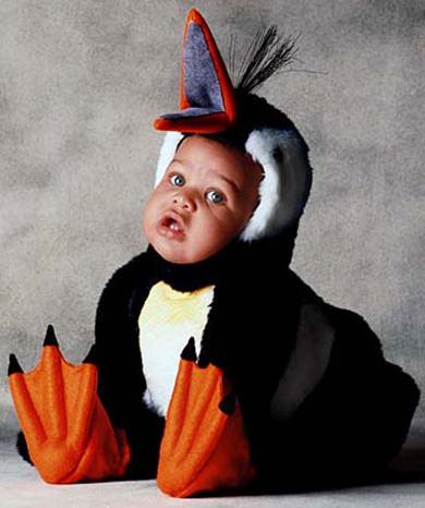 cartoline carnevale, papera, paperella, travestito, abito, camuffare, becco, arancione, bimbo di colore