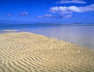 lotta, mare, rena, sabbia, maree, allagare, riva, dunette, vento, granelli, acqua, calma, piattume