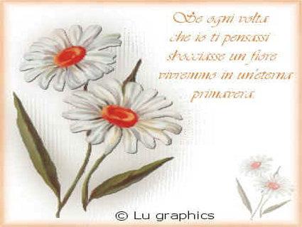 primavera, eterna, fiori, passione, riflettere, sentimento