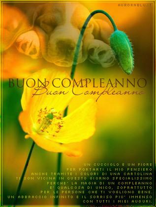 cartoline auguri buon compleanno, cucciolo, fiore, pensieri, specialissimo, giorno unico, bene, sorriso immenso