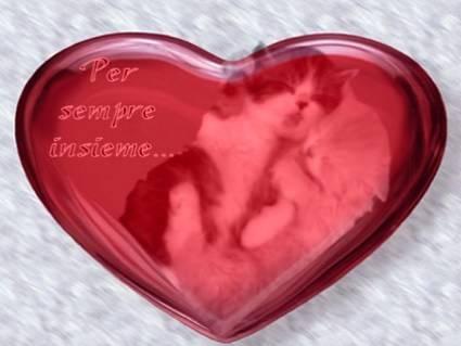 cartoline amore, cuoricino, due gattini nel cuore, abbraccio, calore, sfumature, amarsi, amarti, dolci scritte