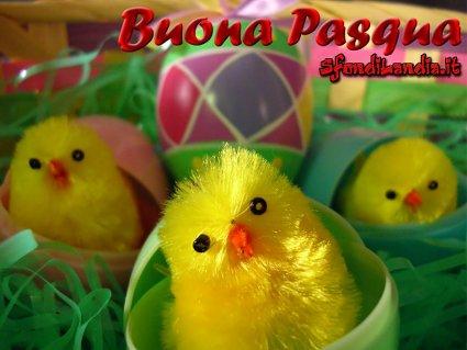 cartoline pulcini di pasqua, rinascita, uova, tradizione, passione