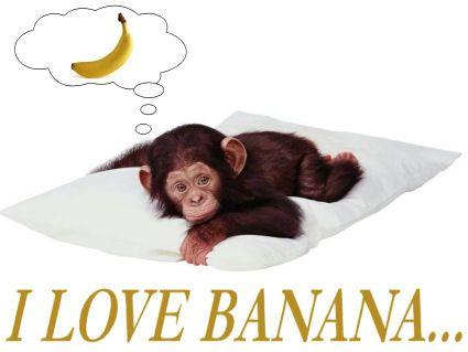 scimmia, amante, grande, mangiatrice, banane, frutto, giallo, doppio, senso, interpretazione, interpretativo, gorilla, scimmietta, fumetto, pensiero