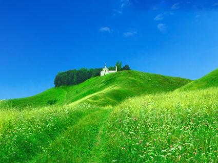 prati, verde, sereni, pascoli, chiesa, passeggio, ruote