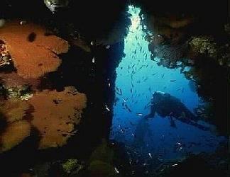 sotto, marino, grotta, marina, colorati, bolle, aria, pinne, areatore, bombola, boccaglio, maschera, sub, palombaro, muta, coralli, alghe