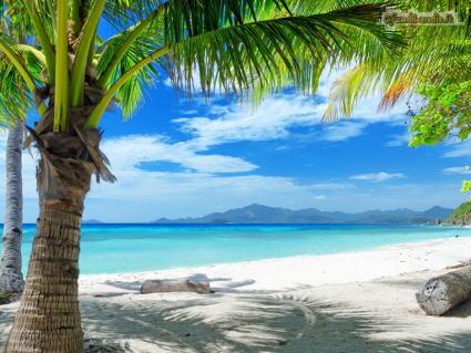 mare, relax, riposo, meritato, viaggio, agenzie, visitare, immersioni