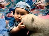 Abbraccio, bambino, pelouches, pupazzo, pezza, neonato, jeans, cappellino, affetto, tenerezza