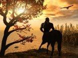 uomo cavallo, attesa, riposo, perdersi, tramonto, spettacolo, naturale, bagliori, bagliore, notte, rapace, falco, aquila
