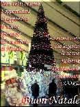 albero, stazione termini, speranze, lettere, richieste, amore, appendere, bebbo natale, auguri, scrivere, letterina, letterine, lettere, sentimento,