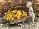 bimbo, cariola, auguri pasqua, fiori, sforzo, forza, potenza, cartoline amore, fatica, ripagata