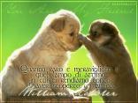 cartolina amicizia, tesoro trovato, sentimenti forti, legame stretto, affidamento, momenti tristi, perdersi, lontani, scoperto un amico