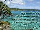 soli, solitudine, naufragio, dispersi, non salvare, nido, cartoline romantiche, amore, coppia, felice, sempre