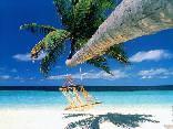 mare, amaca, palma, paradiso, sabbia, sperduto, ondeggio, onde, tranquillità, serenità